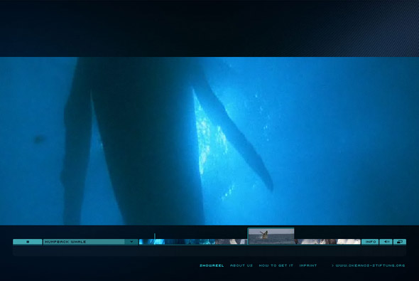 Whalefootage